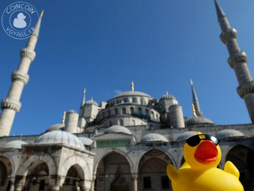 Coincoin à la mosquée bleue