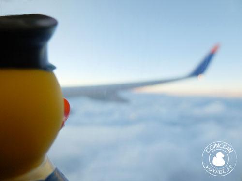 Coincoin dans l'avion