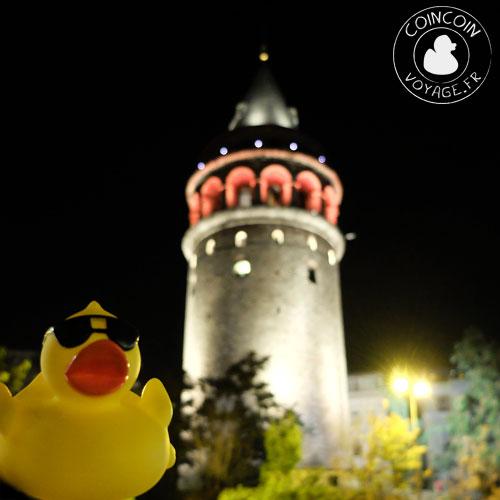 Coincoin et la tour Galata