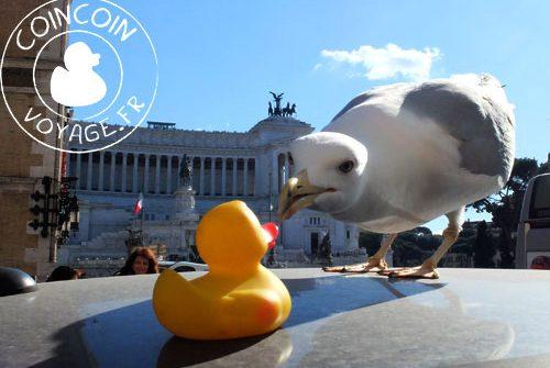 surprise mouette voyage rome