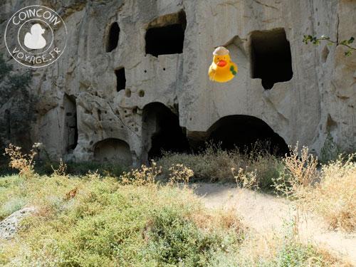 Coincoin dans la vallée d'Ihlara