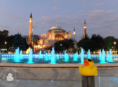 Coincoin et la Mosquée bleue