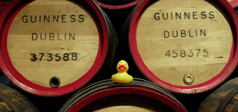 guinness storehouse dublin brasserie