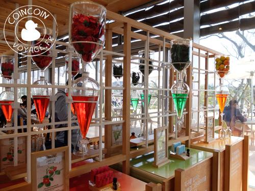 o-sulloc-tea-museum-corée-du-sud